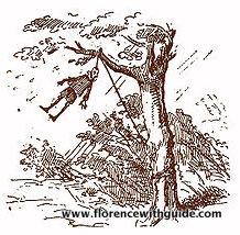 Pinocchio impiccato