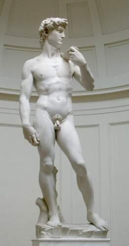 Давид-Микеланджело