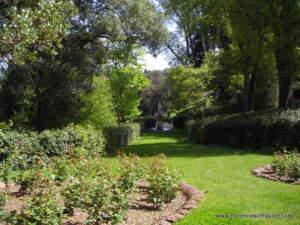 rose giardino bardini